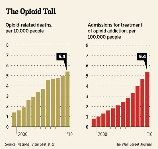opiod toll