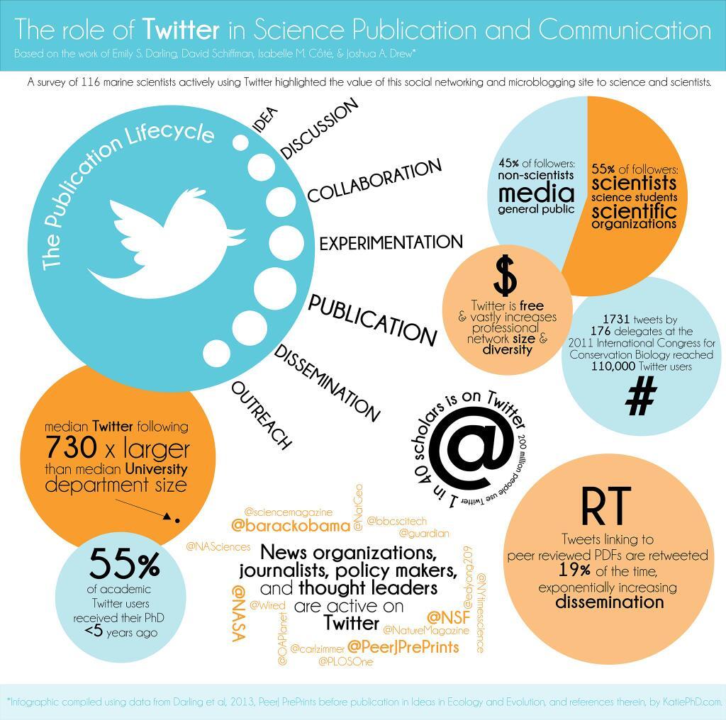 social media and innovation essay
