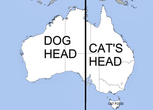 austrailia dog cat