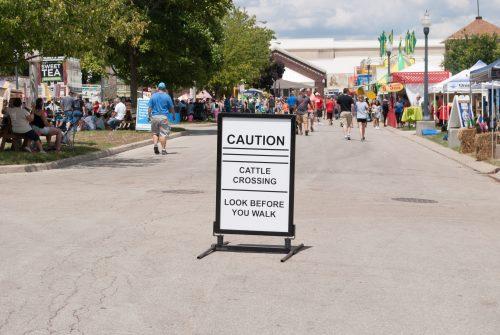 State Fair 2016-2